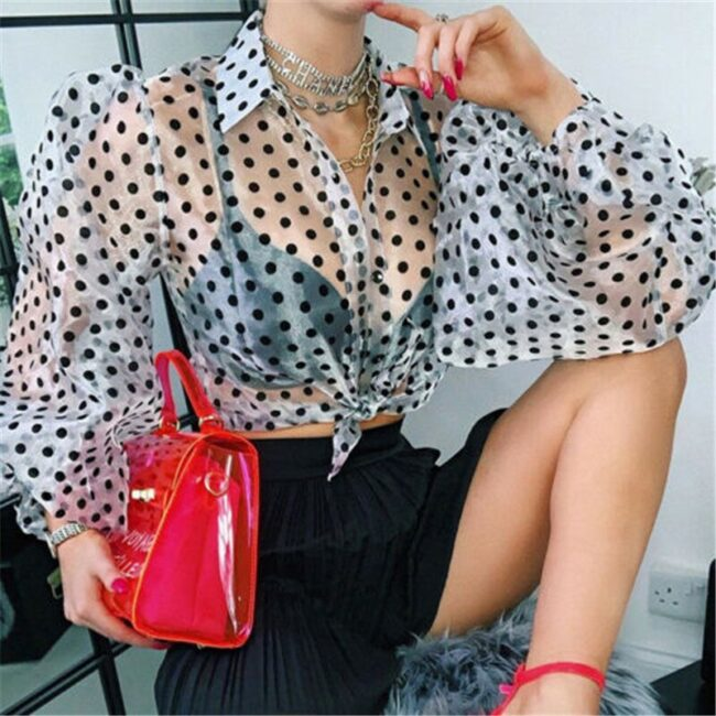 Mesh Sheer Polka Dot Blouse  2