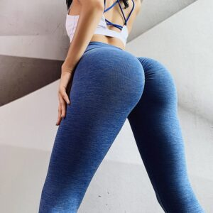 Seamless Legging  1