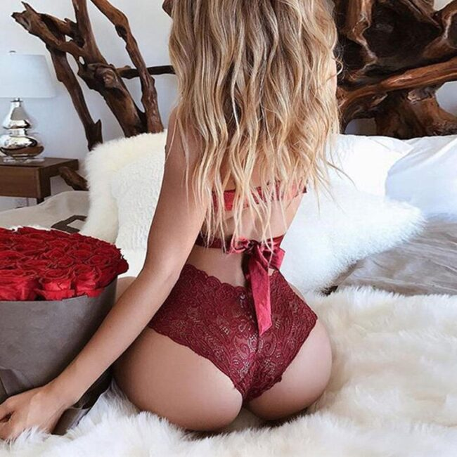 Lace Embroidery Lingerie  3