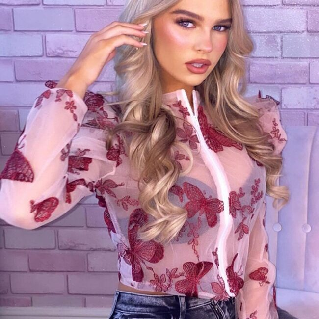 Butterfly Embroidered Mesh Blouse  4